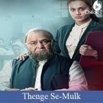 Thenge Se Lyrics - Mulk