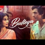 Bulleya Lyrics from the movie RAW
