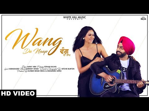 WANG DA NAAP Lyrics | Ammy Virk