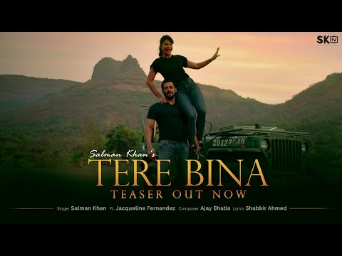 Tere Bina Lyrics | Salman Khan